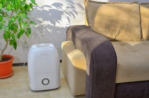 Check for Dehumidifier Recalls